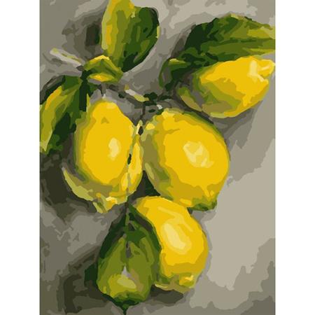 Набор картина по номерам SANTI 30*40 Ветка лимона (953832)